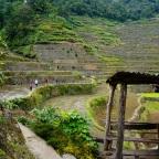 Banaue i tarasy ryżowe Batad