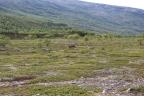 Finnmark – norweskie pustkowie